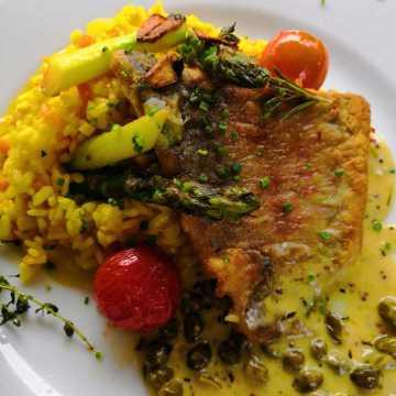 Filet vom Papageien-Fisch an Kapern-Senfsosse auf Safranrisotto